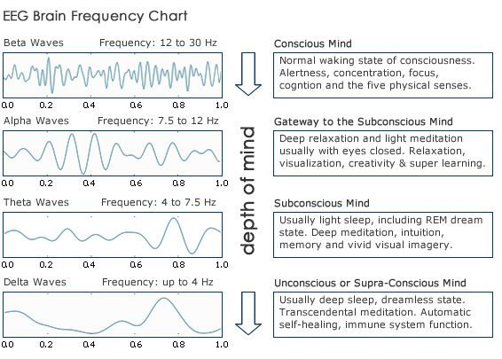 EEG Brain Frequency Chart